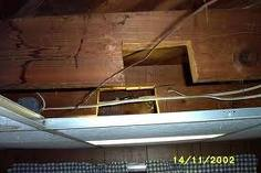 cut floor joist