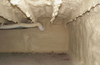 Basement and Crawlspace Insulation Inspection