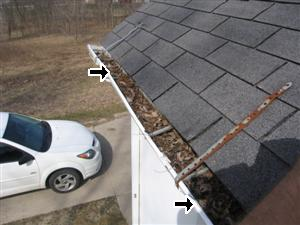 Gutters Need Cleaning