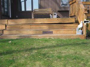 settling deck