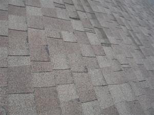 Shingles Losing Excessive Amounts of Granulars